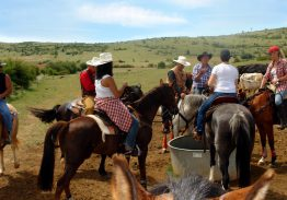 Séjour de travail du bétail 28/29 juillet 2018