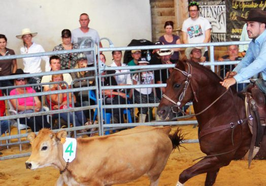 Compétition de Ranch sorting 11/12 mai 2019