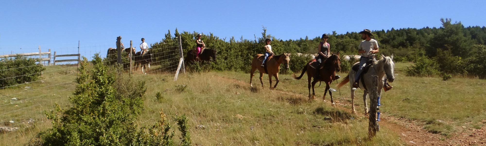 s-visite-cheval